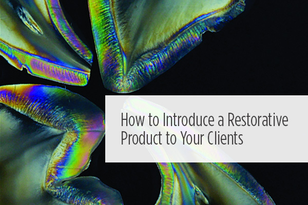 <p> 	With so many introductions in the industry, technicians who wish to use new products sometimes need to produce evidence for persuading wary dentist-clients. Joshua Polansky, MDC, explains how.</p>