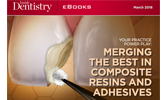 Merging the best composite resins and adhesives!