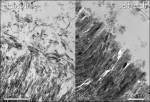 Figure 3  Transmission electron microscopy (TEM) photomicrographs show the enamel-adhesive interface produced by an etch-and-rinse adhesivebat left and a mild self-etch adhesived at right. Note the markedly different interfacial ultrastructure with d