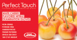 I | Perfect Touch® Cherry Flavored Nitrile Exam Gloves