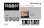 Figure 6  Sample smile selection chart acts as a guide for choosing shape, texture, and color.