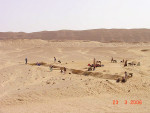 Figure 4  Excavation of the Amarna commoners cemetery(photograph courtesy of the Amarna Project, Barry Kemp,Director).