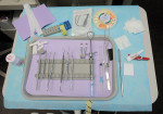 Figure 3  The corresponding endodontic tray set up.